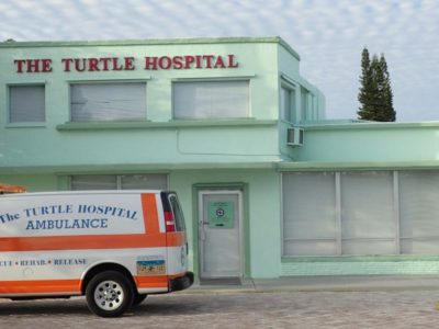 victory yacht supports florida turtle hospital